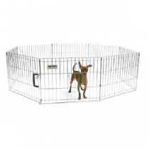 Precision Choice Silver Exercise Pen with Snaps